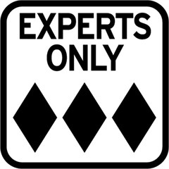 """""""EXPERTS ONLY"""" Road Sign Decal"""