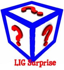 LIG Surprise Apparel (Final Sale)