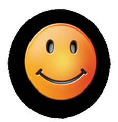 Closeout: Smiley Face Tire Cover - Sunset - Small Only