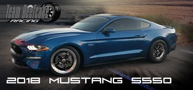 Ford Mustang Parts S550 2018 2019 Team Beefcake Racing