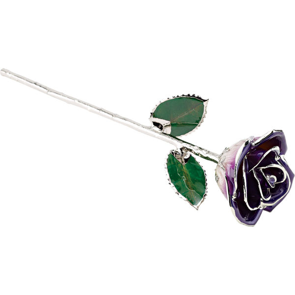 A Real ROSE dipped in Platinum and hand lacquered purple petals